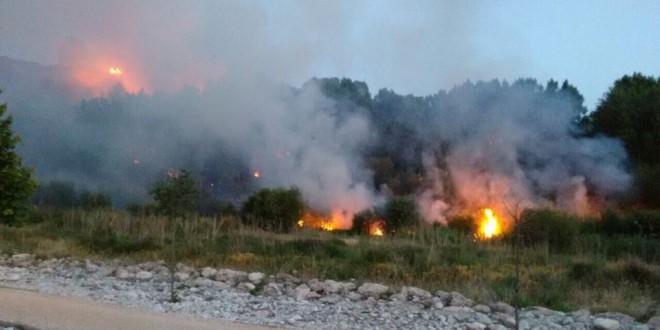 Un incendio calcina una zona de chopos en l´Alquería d´Asnar