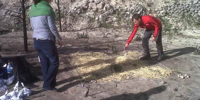 La UMH realiza un estudio sobre el incendio de Serelles