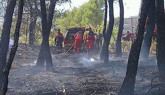 Un incendio arrasa una hectárea de pinar y matorral en Penáguila