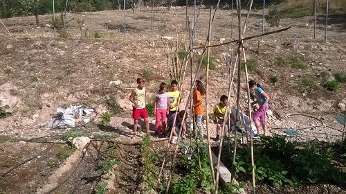 """Más de 600 alumnos participan en """"L´hort ecològic a l´ escola"""""""