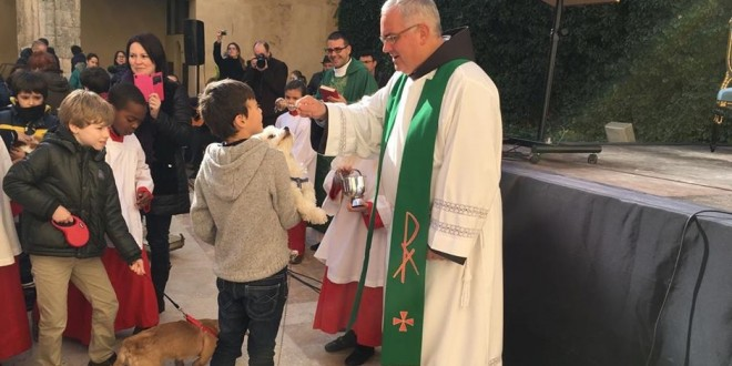 Bendición de animales en Cocentaina para celebrar Sant Antoni