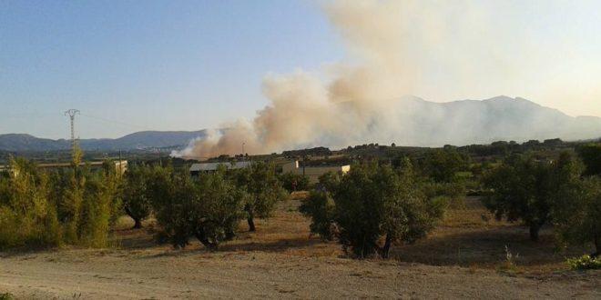 Extinguido el incendio entre Muro y Alcosser de Planes