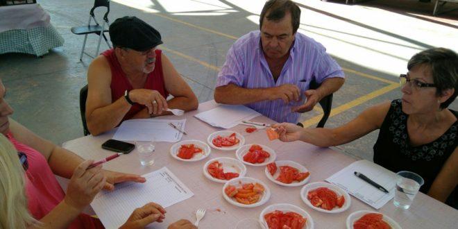 L´Orxa premia a los mejores tomates