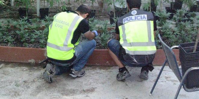 Cae en Cocentaina una banda dedicada al tráfico de drogas