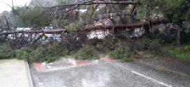 Lluvia y viento provocan varias incidencias en Alcoy