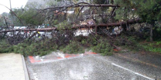Alcoy solicita ayudas por más de 700.000 euros para reparar los daños de los temporales