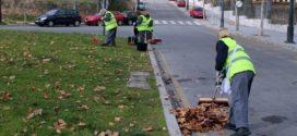 La comarca terminó el mes de noviembre con 211 parados menos