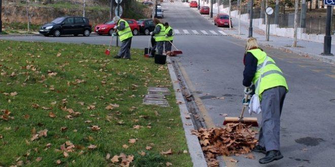 Compromís pide un refuerzo de la limpieza para evitar la acumulación de hojas caídas