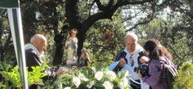 Alcoy peregrina a la Font Roja con la Virgen de los Lirios