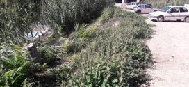 Ciudadanos aplaude que el Gobierno Local vaya a actuar en el solar de 'Els Llançols'