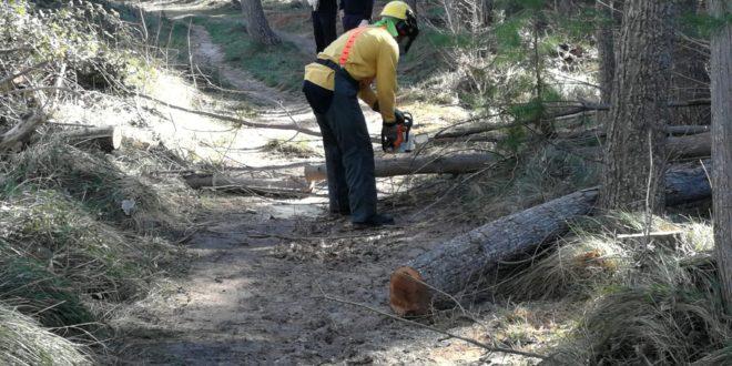 Los Bomberos Forestales restauran las sendas de Alcoy