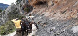 Comienzan las obras en el entorno de las Pinturas Rupestres de La Sarga